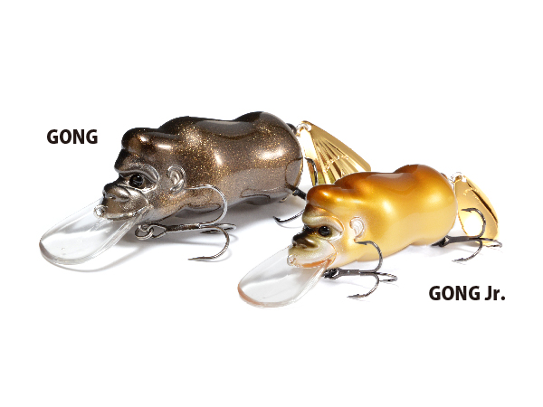 GONG / GONG Jr.