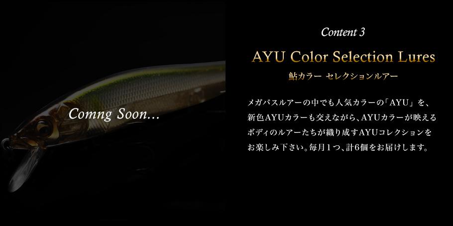 Content 3 AYU Color Selection Lures(鮎カラー セレクションルアー) メガバスルアーの中でも人気カラーの「AYU」 を、新色AYUカラーも交えながら、AYUカラーが映えるボディのルアーたちが織り成すAYUコレクションをお楽しみ下さい。毎月1つ、計6個をお届けします。