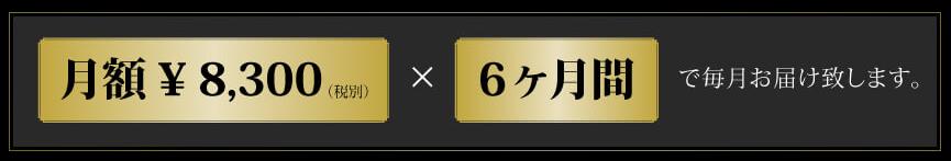 月額¥8,300(税別)×6ヶ月間で毎月お届け致します。