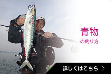 青物の釣り方