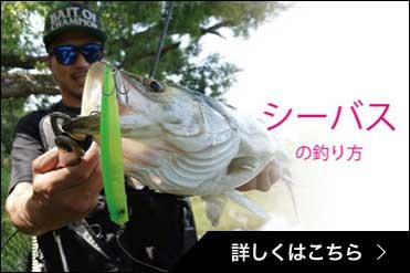 シーバスの釣り方