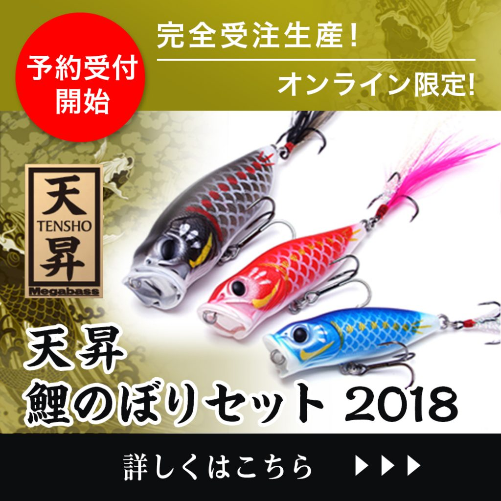 【予約受付開始】完全受注生産&メガバスオンラインショップ限定「天昇 鯉のぼりセット 2018」