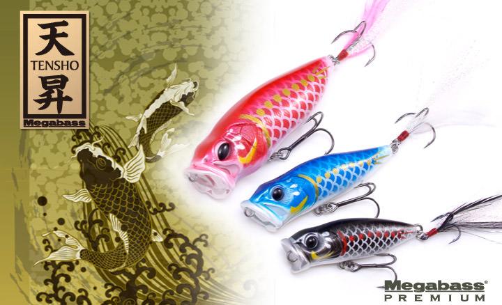 鯉のぼりカラールアー「天昇」
