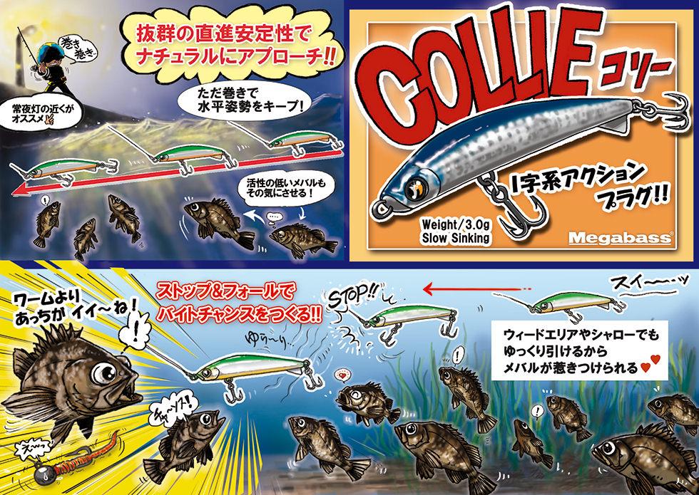 nadar(ナダ) COLLIE(コリー)