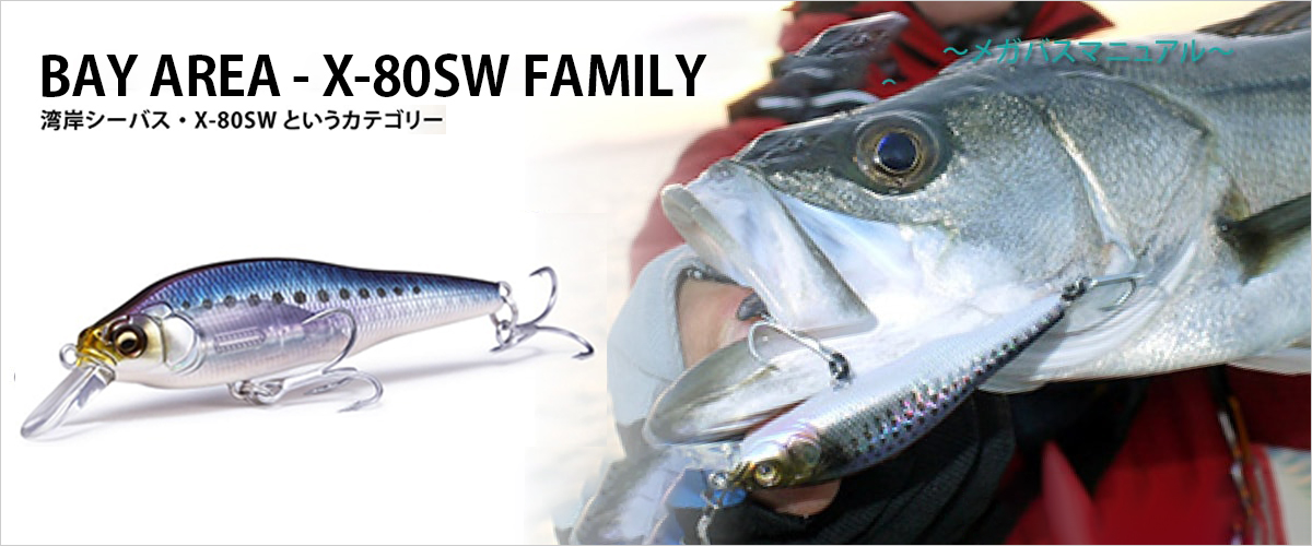 X-80SW FAMILY