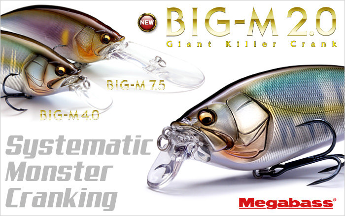 BIG-M 2.0