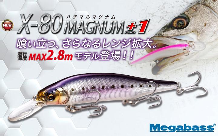 80MAGNUM+1